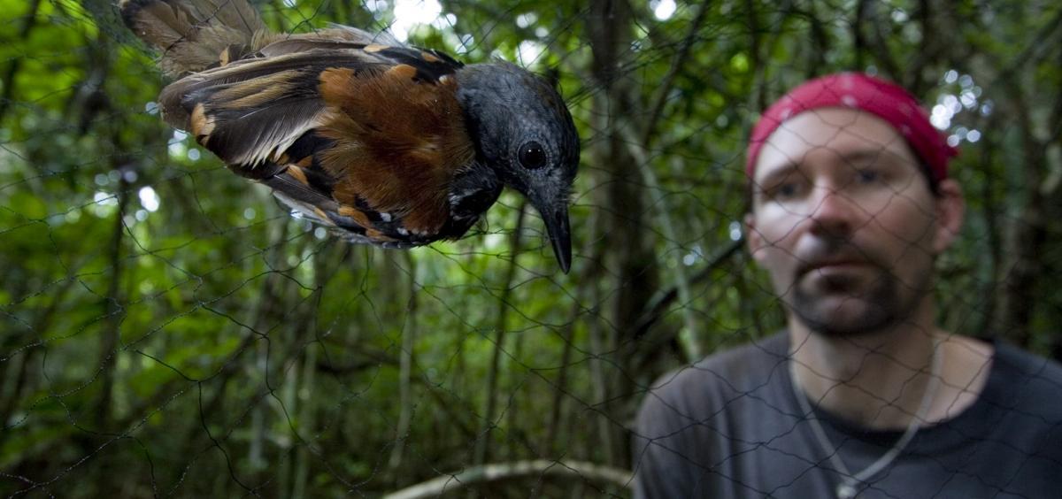 Randy Moore looks at Bird in Net