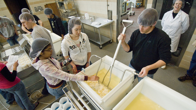 Students making Beaver Classic Cheese