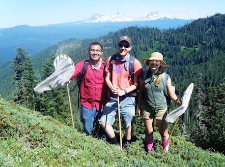 undergraduate research in the Eco-Informatics Summer Institute