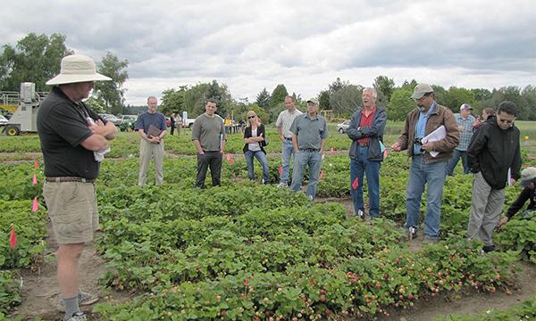 Chad Finn leading a Strawberry Field Day