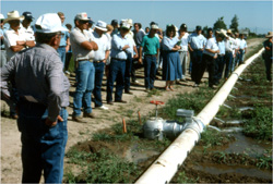 Crowd observing irrigation system