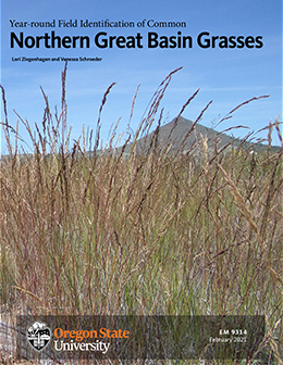 Year-round Field Identification of Common Northern Great Basin Grasses