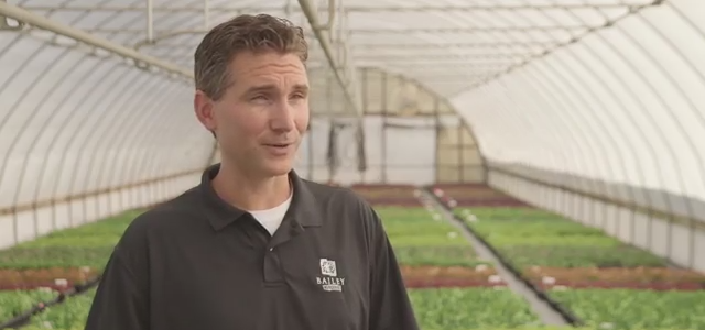 Jeff Stoven heads the plant propagation program at Bailey Nurseries