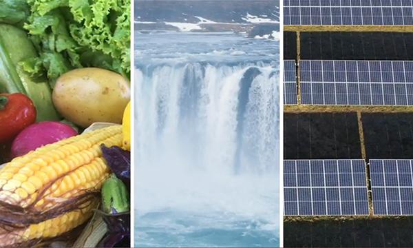 Food | Water | Energy