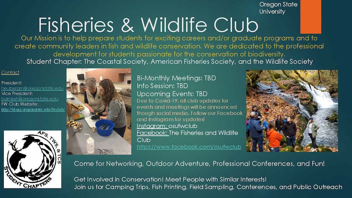 Fisheries and Wildlife Student Association (Undergraduate)