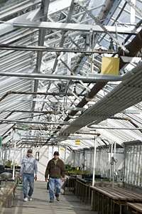 OSU Greenhouse