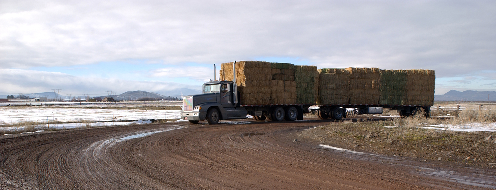 Hay leaving Klamath Falls, Oregon. Most Oregon hay is used in the Pacific Northwest and northern California. About 10 percent goes to Japan and Korea.