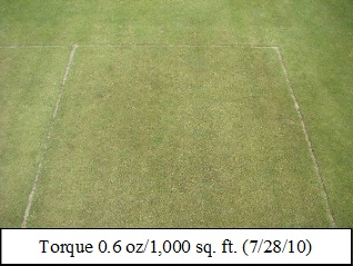 Picture: Torque 0.6 oz/1,000 sq. ft. (7/28/10)