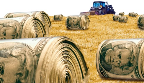 field of bales of money