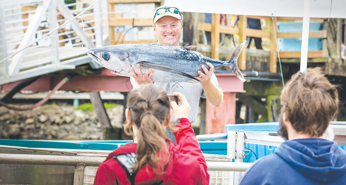 Joe Phillips, of the fishing vessel Triggerfish, shows off an albacore tuna during a previous Shop at the Dock tour.