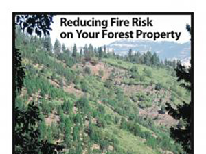 Reducing Fire Risk on Your Forest Property (PNW 618)