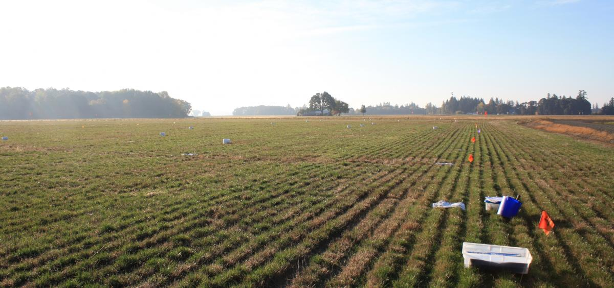 Sampling equipment in a field