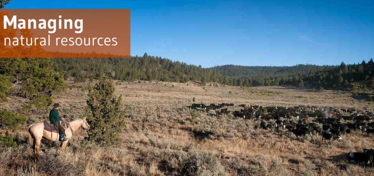 Managing natural resources in eastern Oregon