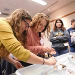 Teachers testing boat design