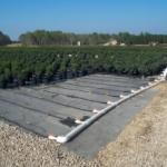 Micro-irrigation pad