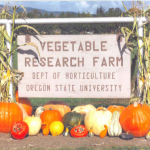 Vegetable Research Farm, Dept. of Horticulture, Oregon State University