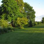 The park.  Photo courtesy of:  Randy Hopson