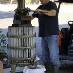 Pressing Grapes. Photo courtesy of: Dwight Brimley