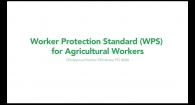 Worker Protection Standard (WPS) for Agricultural Workers