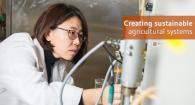 Hong Liu makes beer wastewater into energy