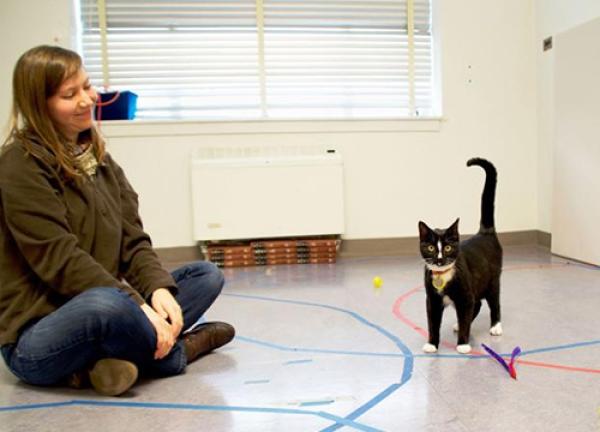 Kristyn Vitale with a cat