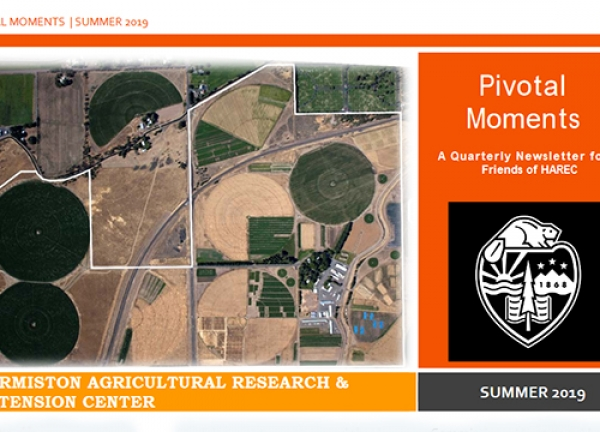 Pivotal Moments newsletter - July 2019