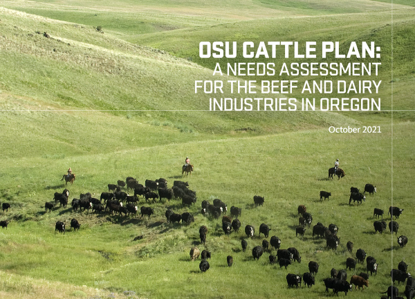 Statewide needs Assessment for the Cattle Industry - October 2021