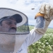 Ramesh in bee gear studying bees