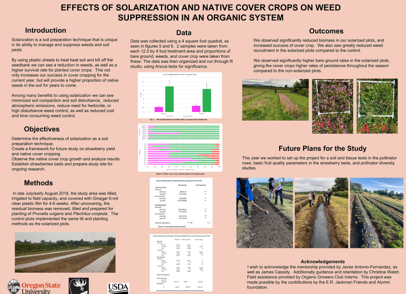 Alder Cromwell: Effects of Solarization and Native Cover Crops on Weed Suppression in an Organic System