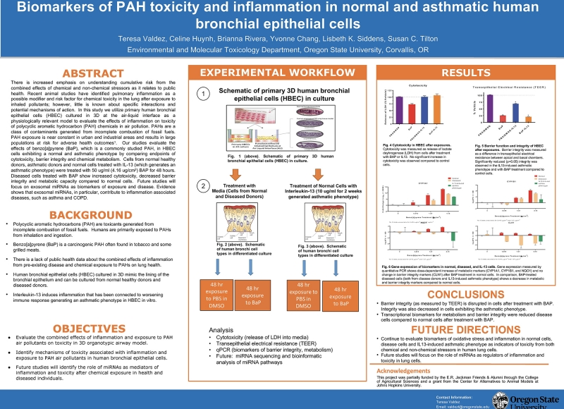 Teresa Valdez: Biomarkers of PAH toxicity and inflammation in normal and asthmatic human bronchial epithelial cells