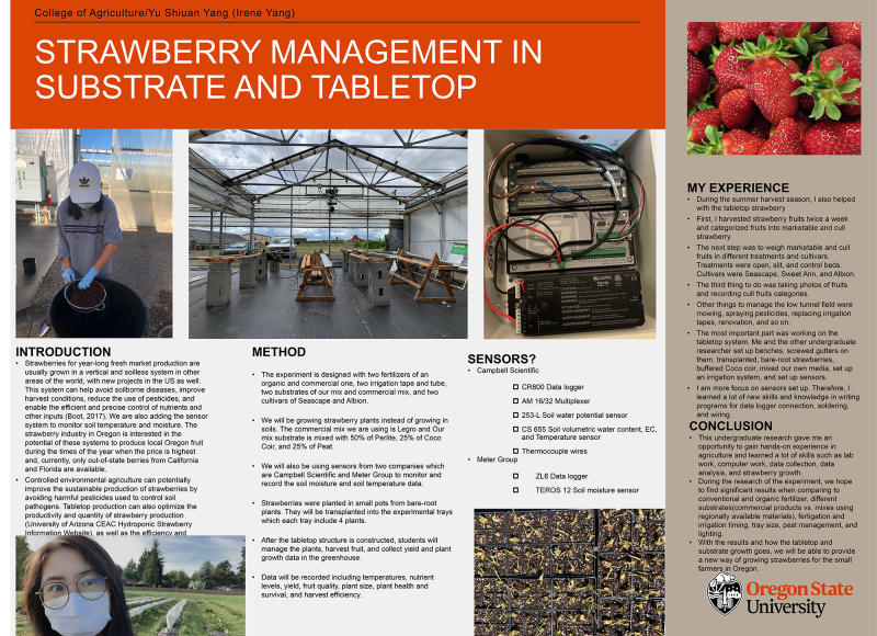 Yu Shiuan Yang (Irene Yang): Strawberry Management in Substrate and Tabletop