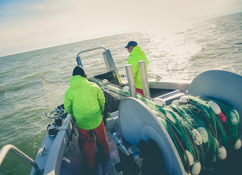 Catching salmon on Alaska's Copper River is an unpredictable business, so Cordova-based 60 North added halibut and blackcod to its processing line. 60 North/Sena Sea photos