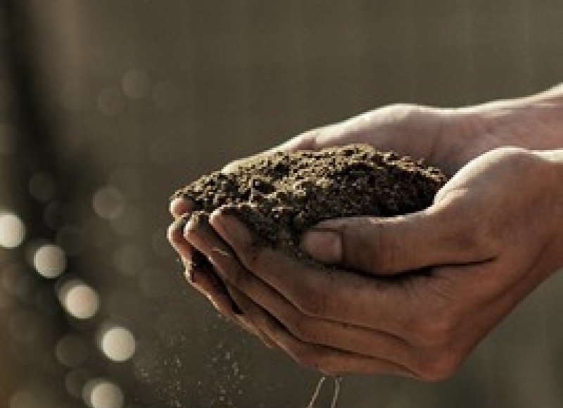 Soil pH is important for plant health.