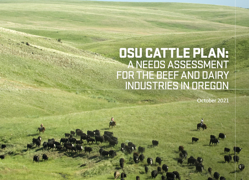 OSU Cattle Plan: A needs assessment for the beef and dairy industries in Oregon.