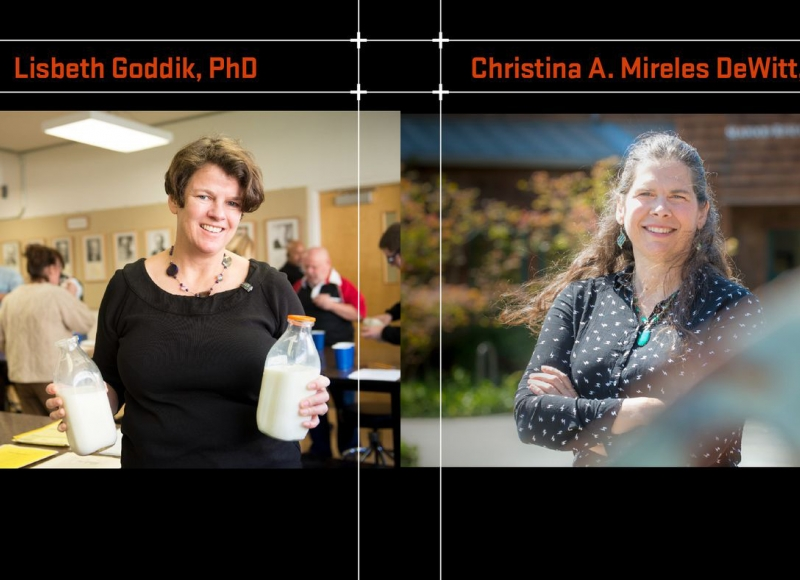 Lisbeth Goddik, PhD & Christina A. Mireles DeWitt, PhD