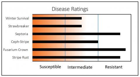 Bobtail disease resistance