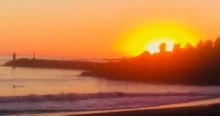 Linda King took this photo of the sunset and noticed what she thought might be a shark in the lower left corner.