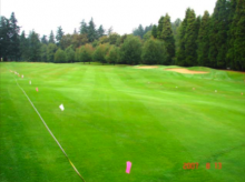 2007 Evaluation of 3 and 4 Week Timing Intervals of Fungicide Applications for t