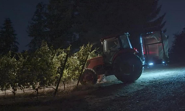tractor using UVC lighting on a vineyard at night