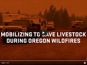 Mobalizing to Save Livestock During Oregon Wildfires